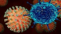 Koronavirüs bugün 153 eve daha ateş düşürdü
