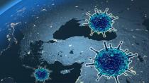 Koronavirüs bugün 74 kişiyi yaşamdan kopardı