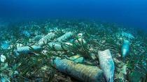 Plastik atıkları yok edecek bilimsel gelişme: Çinli araştırmacılar PET şişeleri yok eden bir bakteri buldu