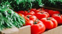 Türkiye 'İsrail virüsü' ile karşı karşıya: Bir kaç yıl sonra yiyecek domates bulamayacağız