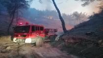 Türkiye genelindeki orman yangınları