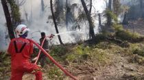 Antalya Gündoğmuş'taki orman yangını